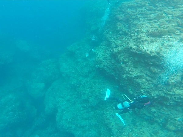 沖縄のシュノーケリングポイント